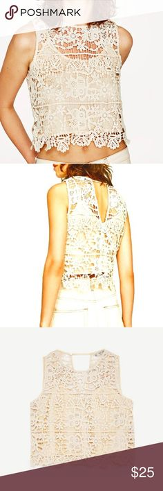 Crochet Top Sleeveless, cotton crochet top with round neckline. V opening in the back. Lined. Zara Tops