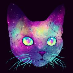 "620 Gostos, 34 Comentários - Jen Bartel (@heyjenbartel) no Instagram: ""✨GALACTIC CATS✨ the Devon Rex is also known as the pixie cat! #art #drawing #illustration #design…"""