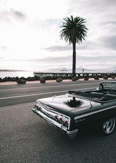 roybrandys:  California.
