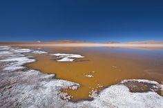 Bolivia   Laguna Hedionda