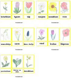 * Woordkaarten lente bloemen. TIP: 2 x uitdraaien, 1 kaart heel laten 1kaart los knippen ll legt de dezelfde kaarten erbij /memorie/stempelen... Gebruik ze in combinatie met de echte woordkaarten!