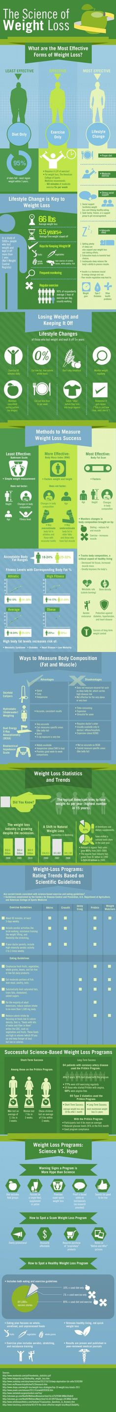 The science of weight loss (Infographic) | Sciencedump