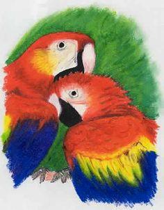Love birds in oil pastels
