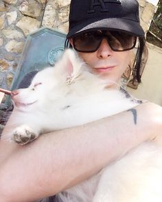 IAMX (@IAMX) | Twitter          If you ever struggle with the darkness adopt a dog .  This sentient being brings me joy everyday .