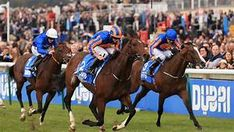 Churchill hardened as favourite for the 2000 Guineas after a typically hard-fought victory in the Dubai Dewhurst Stakes. Thunder Snow, Ryan Moore, Lancaster Bomber, Blue Point, Racing News, Over The Moon, Victorious, Dubai