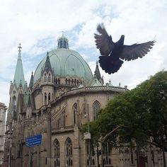 Catedral da Sé by @laialamargonar #saopaulocity #catedraldase Conheça também nosso site www.spcity.com.br