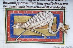 Bestiary, MS M.81 fol. 51r - Images from Medieval and Renaissance Manuscripts - The Morgan Library & Museum
