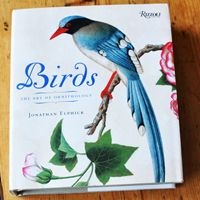 A collection of some of the best field guides for families