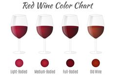 Red wine color chart. by Sunshine Art Shop on @creativemarket