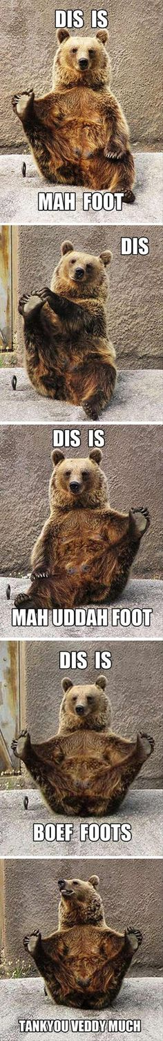 What a silly #bear. #funny #animals