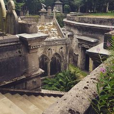This city just keeps on giving. Victorian catacombs, vaults and vampires just 15 mins from my door. Incredible! #london #highgatecemetery