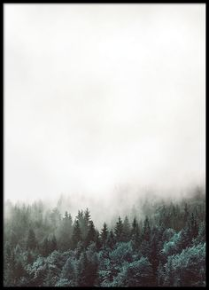 Snygg affisch med skog, ca 150-200 kr, sovrum
