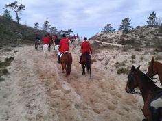 cavalos na areia Comporta, Portugal