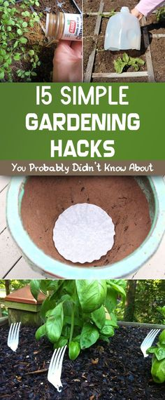 15 Simple Gardening Hacks You Probably Didn\'t Know About