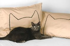 Cat Nap Pillow Cover Set  I just ordered a set - can't wait til they come!