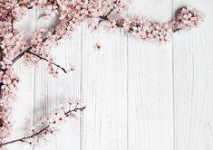 مرکز تخصصی چاپ کاغذ دیواری در اصفهان و جنوب کشور www.ir Paper Printing Factory in Iran # خلفية # ملصقات_الحائط # ملصقات_جدارية # طباعة_ورق_جدران_أصفهان # طباعة_أصفهان # الديكور # تزيين_المنزل مصنع طباعة الورق في ایران Flower Backgrounds, Photo Backgrounds, Background Images, Plum Flowers, Fruit Flowers, Fabric Backdrop, Floral Backdrop, White Background Photography, Vinyl Backdrops