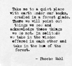 Take me to a quiet place, with earth under our backs, cradled in a forest glade. There, we will point out things we see, and acknowledge those things we do not. In solitude, we take in the wisdom offered in each other and take in the hum of the forest.-Phoebe Wahl.