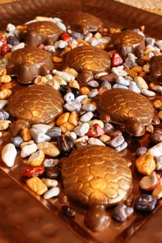 Gold Dusted Chocolate Turtles resting on candy rocks!