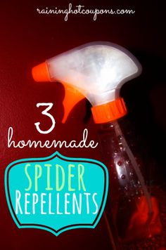 1.Peppermint: 1 part peppermint, 1 part water and a few drops of dish soap in a spray bottle. 2.Coconut: 1 part coconut oil and 1 part vinegar, mix together in a spray bottle. Use this method in your shower, bathrooms, windows and even around all your drains in the house. 3.Citrus: Drop a few essential oils anywhere around the house that they show up!