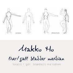 liver and gall bladder meridian courses// Verlauf von Leber und Gallenblasen Meridian #MakkoHo