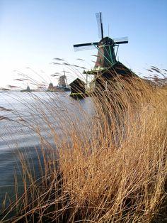 Windmills in Zaanse Schans, Netherlands  Dragan Djuric, 2012 #holland #windmill #travel