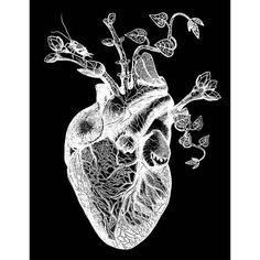 vintage human heart - Buscar con Google
