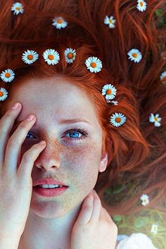 beautiful little daisies in bright red hair
