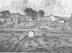 The Nehemiah Letts Farm in the Late 1850's