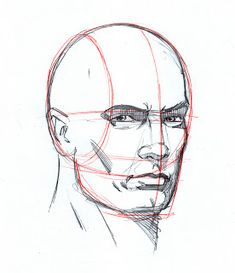 Uplifting Learn To Draw Faces Ideas. Incredible Learn To Draw Faces Ideas. Human Face Drawing, Face Drawing Reference, Drawing Heads, Male Figure Drawing, Body Drawing, Anatomy Drawing, Anatomy Art, Art Reference Poses, Human Face Sketch