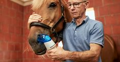 Sector-first therapy for severe equine asthma Asthma, Lunges, New Product, Therapy, Medical, Medical Doctor, Counseling, Medical Technology, Medicine