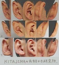 ear reference photo, How to Draw Ears - Step by Step, -tutorial Step by Step . Human Reference, Anatomy Reference, Reference Images, Photo Reference, Ear Anatomy, Anatomy Poses, Anatomy Drawing, Anatomy Art, Human Figure Drawing