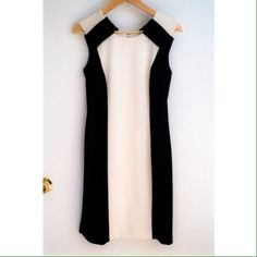 Black/Ivory Colorblock Dress NWOT ✨Host Pick- Back to Basics 6/1/14✨ purchased at Saks 5th Ave. This gorgeous dress style is so hot right now. Never been worn! The exposed zipper gives a modern chic edgy look. The fabric is so stretchy and comfortable it feels like a soft sweatshirt! It's also lined for added comfort and wearability. It says size 4 but runs big. Fits more like a 6. I'd be happy to take specific measurements. Don't miss this! Chetta B Dresses