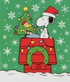 Snoopy Love, Snoopy Feliz, Snoopy E Woodstock, Charlie Brown Snoopy, Peanuts Christmas, Charlie Brown Christmas, Noel Christmas, Christmas Quotes, Christmas Pictures