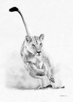 dog training,dog hacks,smart dog,teach your dog,dog learning Realistic Pencil Drawings, Pencil Art Drawings, Art Drawings Sketches, Lion Sketch, Lion Drawing, Drawing Animals, Tattoo Graphic, Lion Pictures, Lion Art