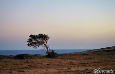 Karpathos, Country Roads, Celestial, Sunset, Outdoor, Outdoors, Sunsets, Outdoor Games, The Great Outdoors