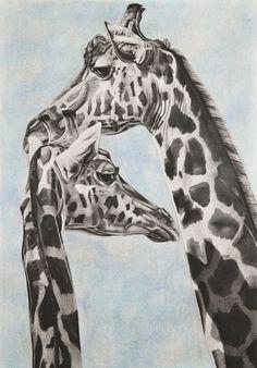 """Saatchi Online Artist: Ashleigh Dix; Charcoal, Drawing """"Giraffe"""""""