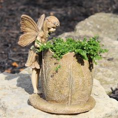 Make your gardens even fairer with the Fairy Flower Planter - Perfect in the house or on your patio. The Planter comes with a Fairy Helper! Dimensions: 8″ Tall | Planter: 5″ Diameter | Base: 6″ Diamet