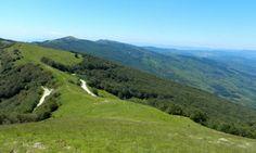 Passeggiate nella natura del Parco Nazionale delle foreste Casentinesi. Nature walks of the National Park of Casentino Forests. Tuscany Italy www.borgotramonte.it