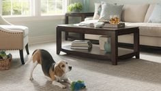 Your flooring options are endless.  Here are 10 questions to ask before buying a new floor.