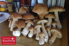 #poradnik o tym jak zbierać #grzyby. Teraz możesz wybrać się na grzybobranie i o wiele łatwiej przekonać się, że zbierać grzyby można bezpiecznie i w odpowiedzialny sposób.  http://pozytywnakuchnia.pl/jak-zbierac-grzyby/  #kuchnia