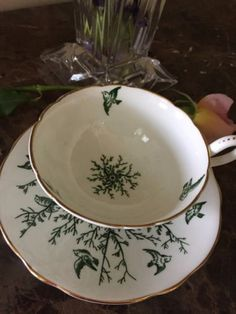Coalport Tea cup and saucer Green birds English fine bone china gold accent