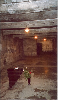 gas chamber. A 1000 poor souls were crammed in at a time. To fill up even more, young children and babies would be passed over heads and squeezed in. Imagine their terror..,all of the victims terror.