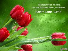 Rainy day quotes in this post will make you love and look forward to rainy days. As Amy Miles said, a rainy day is a special gift to readers. Rainy Day Images, Rainy Day Pictures, Morning Images, Good Morning Wishes, Day Wishes, Rainy Day Wallpaper, Rainy Day Quotes, Rain Quotes, My Wish For You