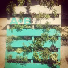 jardines verticales con palets para embellecer tu casa plantas y jardn macetas y