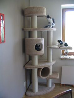 For cat corner! #cats #CatTree