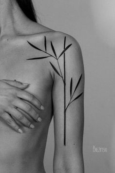 Tattoo • Plant by Ilya Brezinski •
