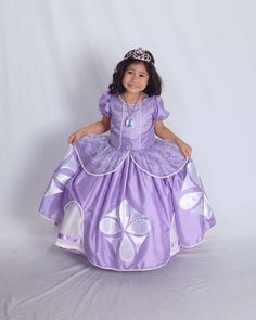 Sofia the First Birthday Party Ideas | Photo 27 of 28 | Catch My Party