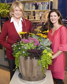 Fall Blooming Perennials - Martha Stewart Home & Garden