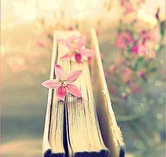"""""""Un libro abierto es un cerebro que habla; cerrado un amigo que espera; olvidado, un alma que perdona; destruido, un corazón que llora"""""""