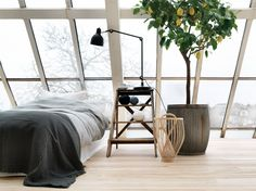 minimal bedroom interior with large windows